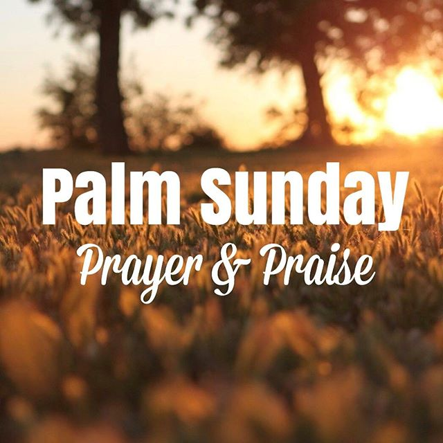 Palm Sunday is here! Join us tomorrow for a power hour of prayer and praise to prepare for Easter week. Service starts at 10:30am. See you there!