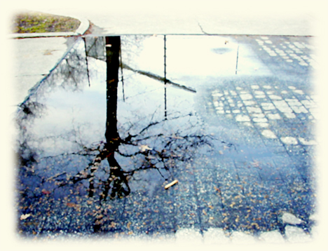 puddle_photo_graphic.jpg