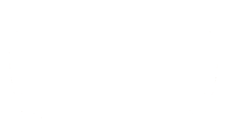 IDA Award laurels 2013 MERGED White.png