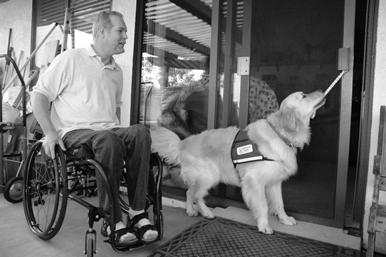 Source:  http://www.spd.org.sg/updates/detail/paws-in-service-how-service-dogs-could-assist-persons-with-disabilities-95.html