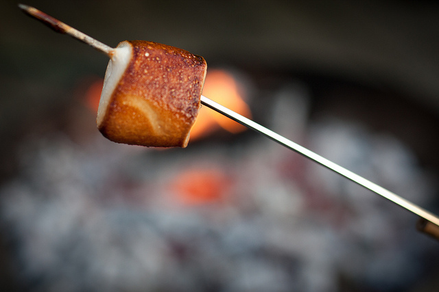Master of toasting marshmallows