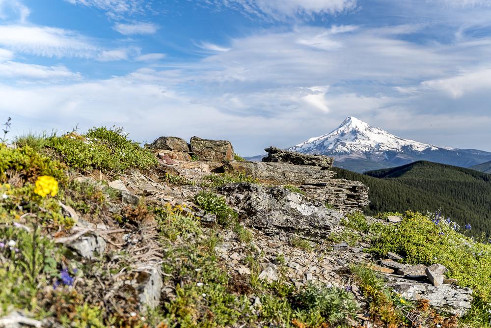 Mt-Hood-Ridge.jpg