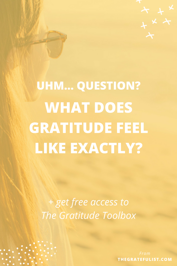 "In the blog post I tackle this question: ""I've been thinking about gratitude because so many people say that it is instrumental in their happiness. What does gratitude feel like exactly? It doesn't come easily for me."" Click through for my answer and to get free access to The Gratitude Toolbox."