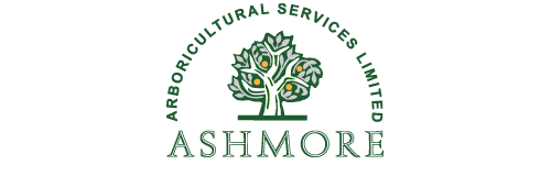 Ashmore Arboricultural Services Limited