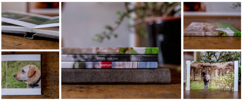 Bitsa Bernard customised Albums of your Pet Photoshoot