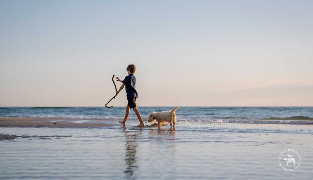 Boy and dog at Grange Beach by Adelaide pet photographer