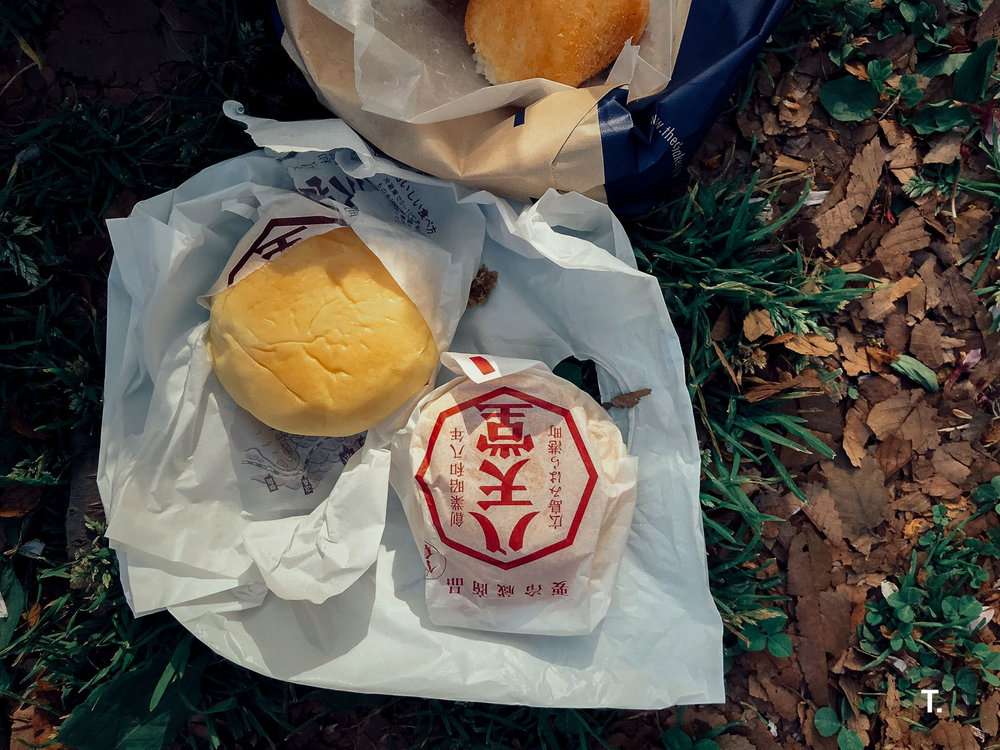 Enjoying the best fresh cream buns in Yoyogi Park