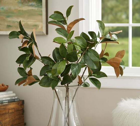 Pottery Barn - Faux Magnolia Branch
