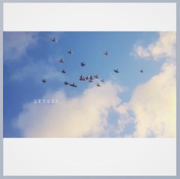 Screenshot (3185).png