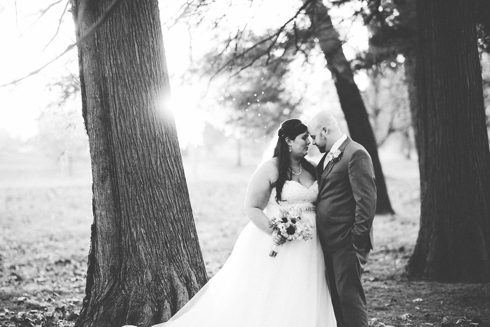 2015weddings 103.jpg
