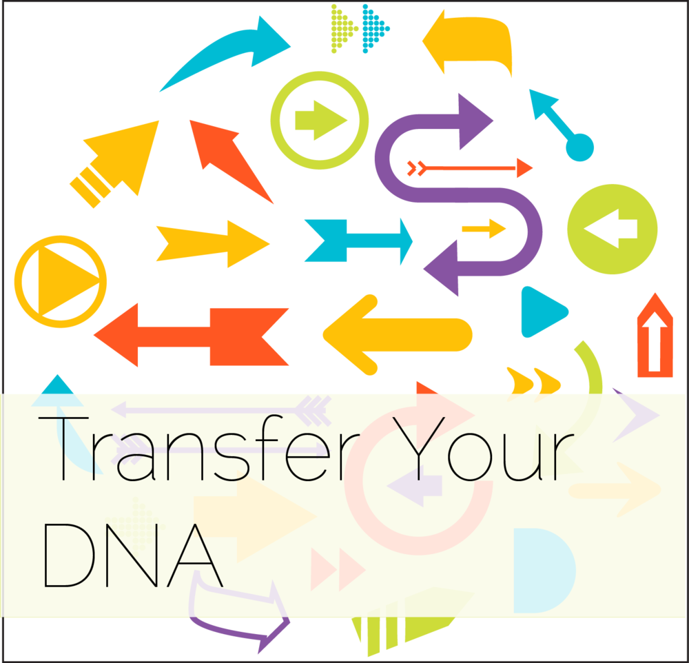Transfer DNA Test Results Thumbnail