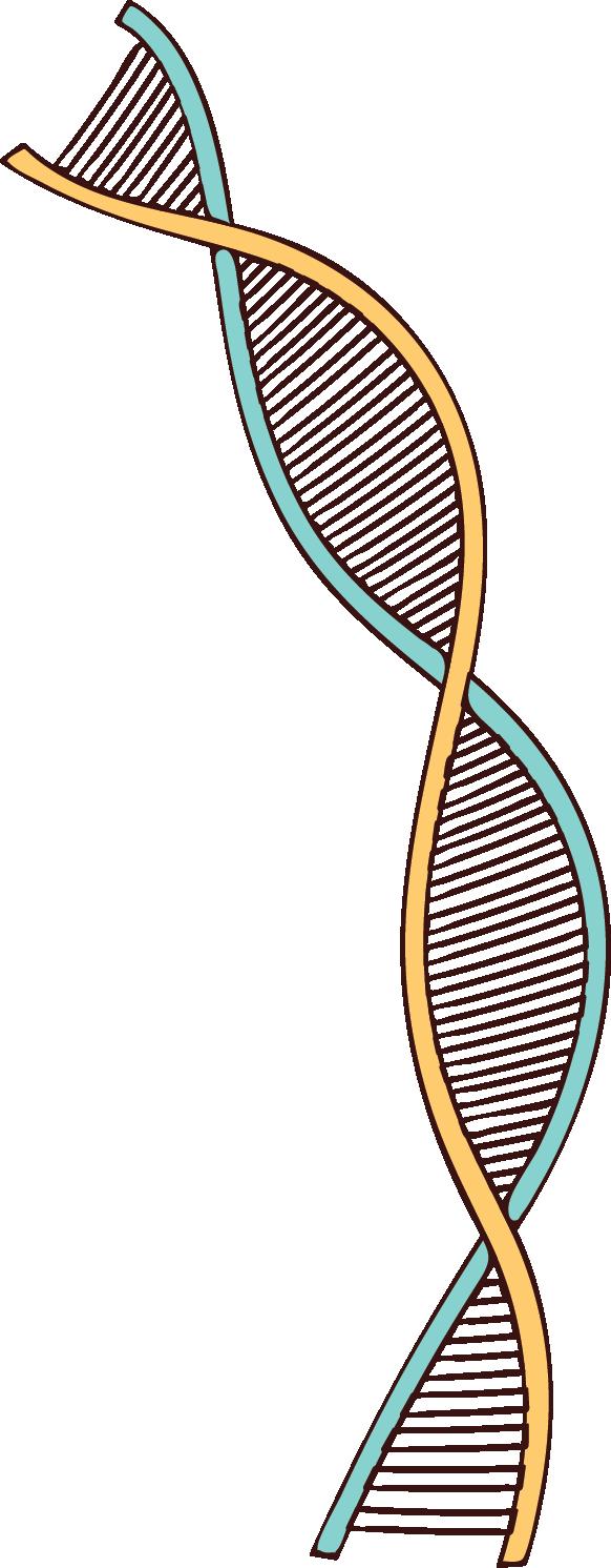 DNAvintage.png