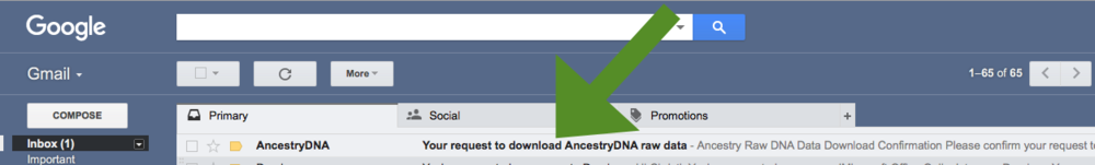 AncestryDNA raw data download email