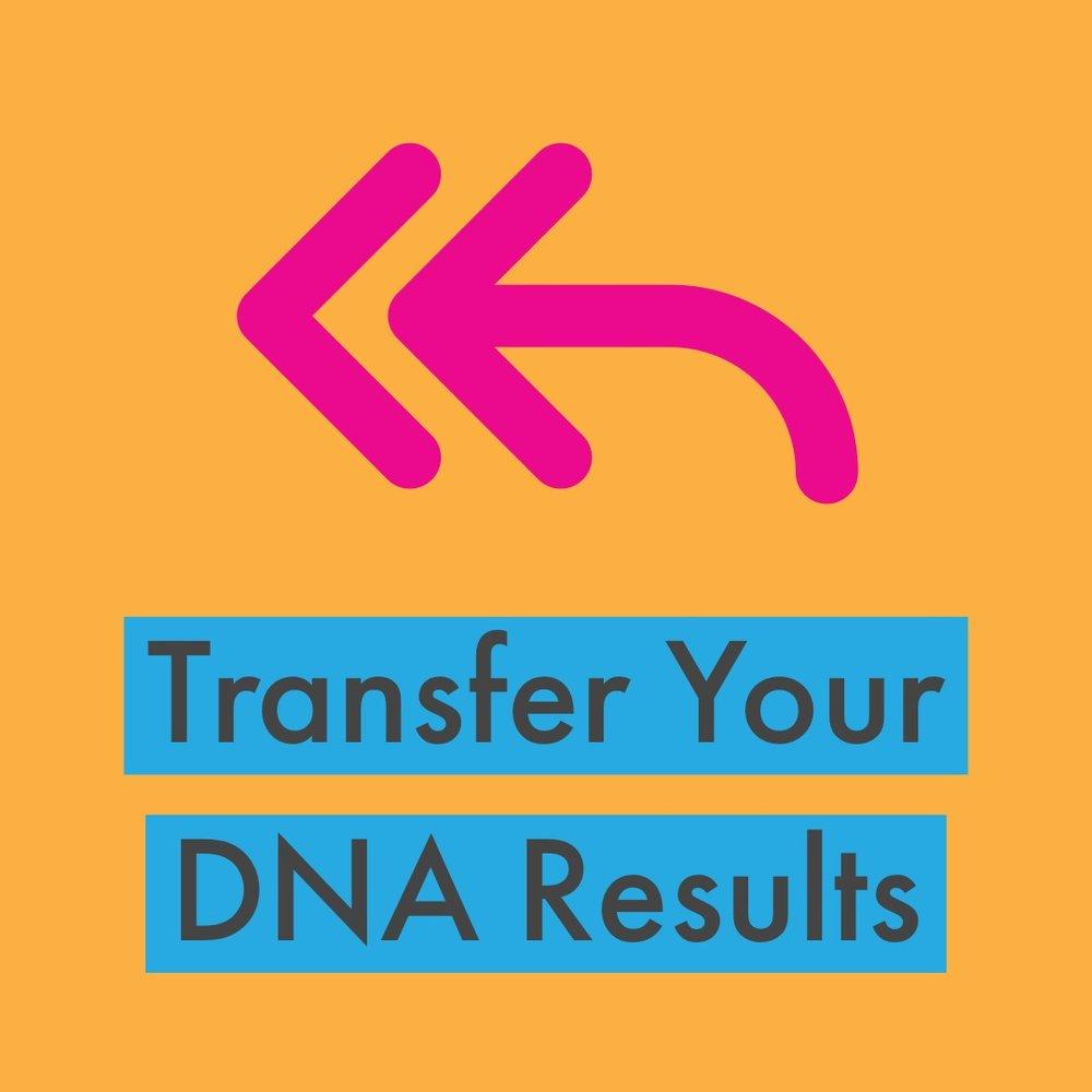 Transfer2.JPG