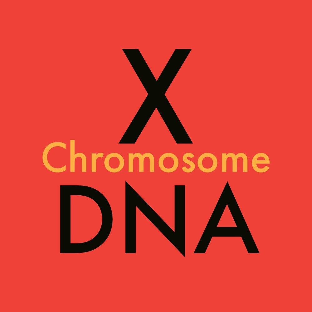 X chromosome DNA