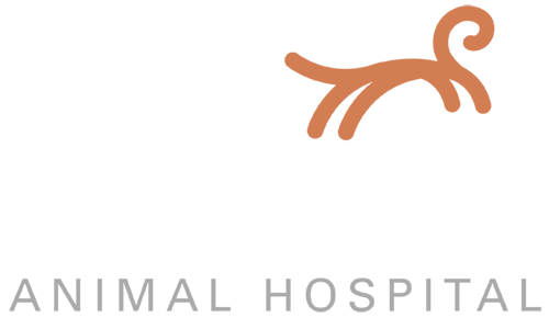 Edgewood Animal Hospital