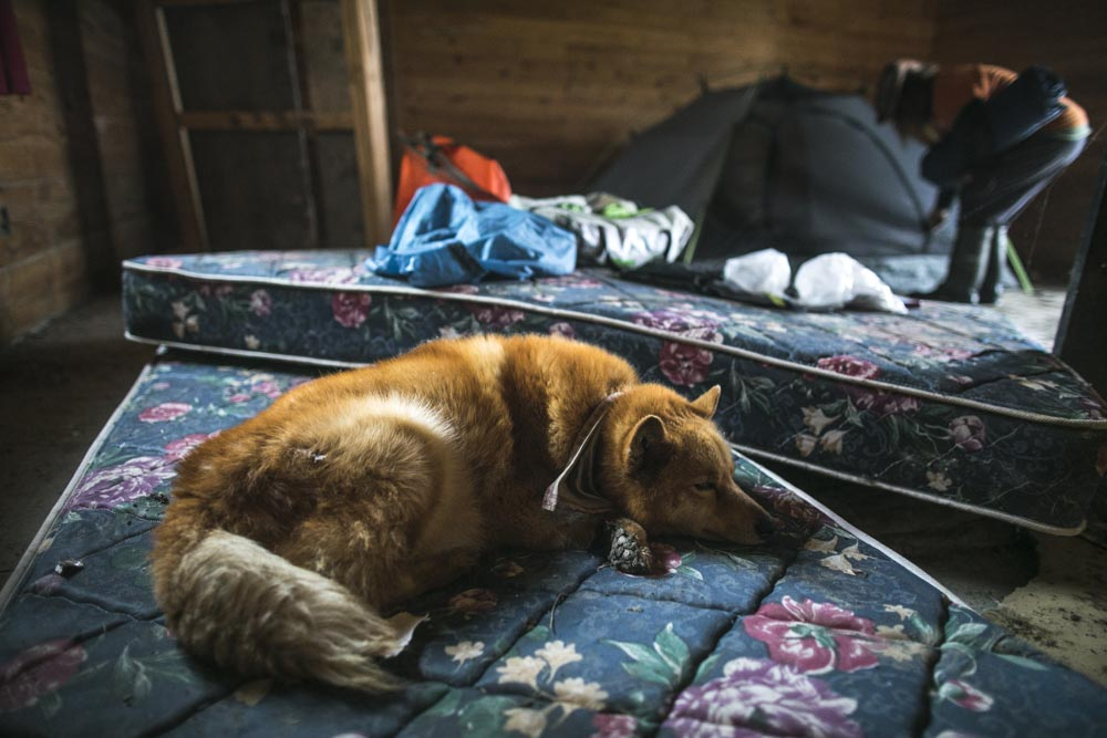 June 17, 2017.