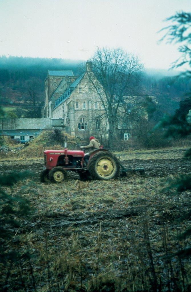 Tractor 3.jpg