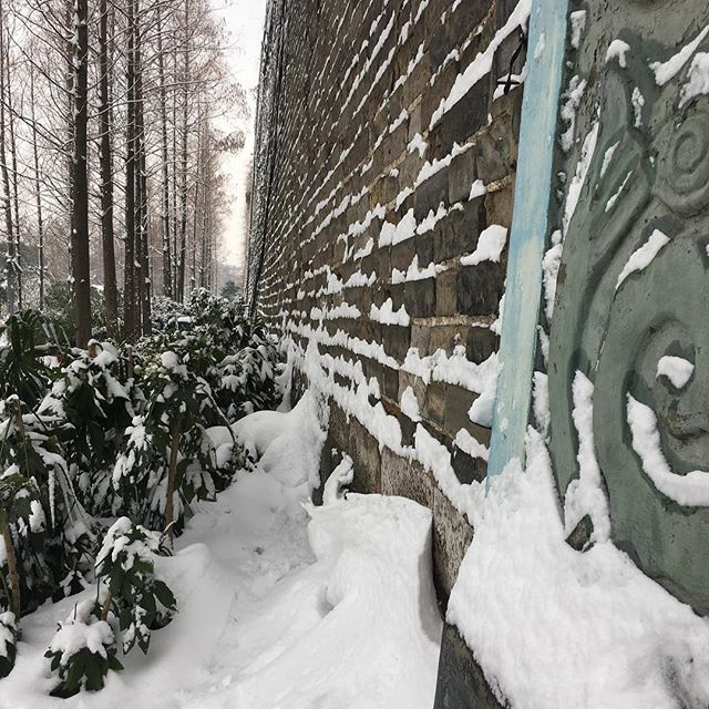 Most snow in Nanjing in 15 years. Beautiful day to walk the wall.