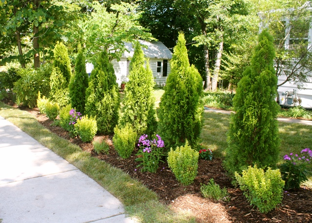Ryans Landscaping 18.JPG - Landscaping Services — Ryan's Landscaping