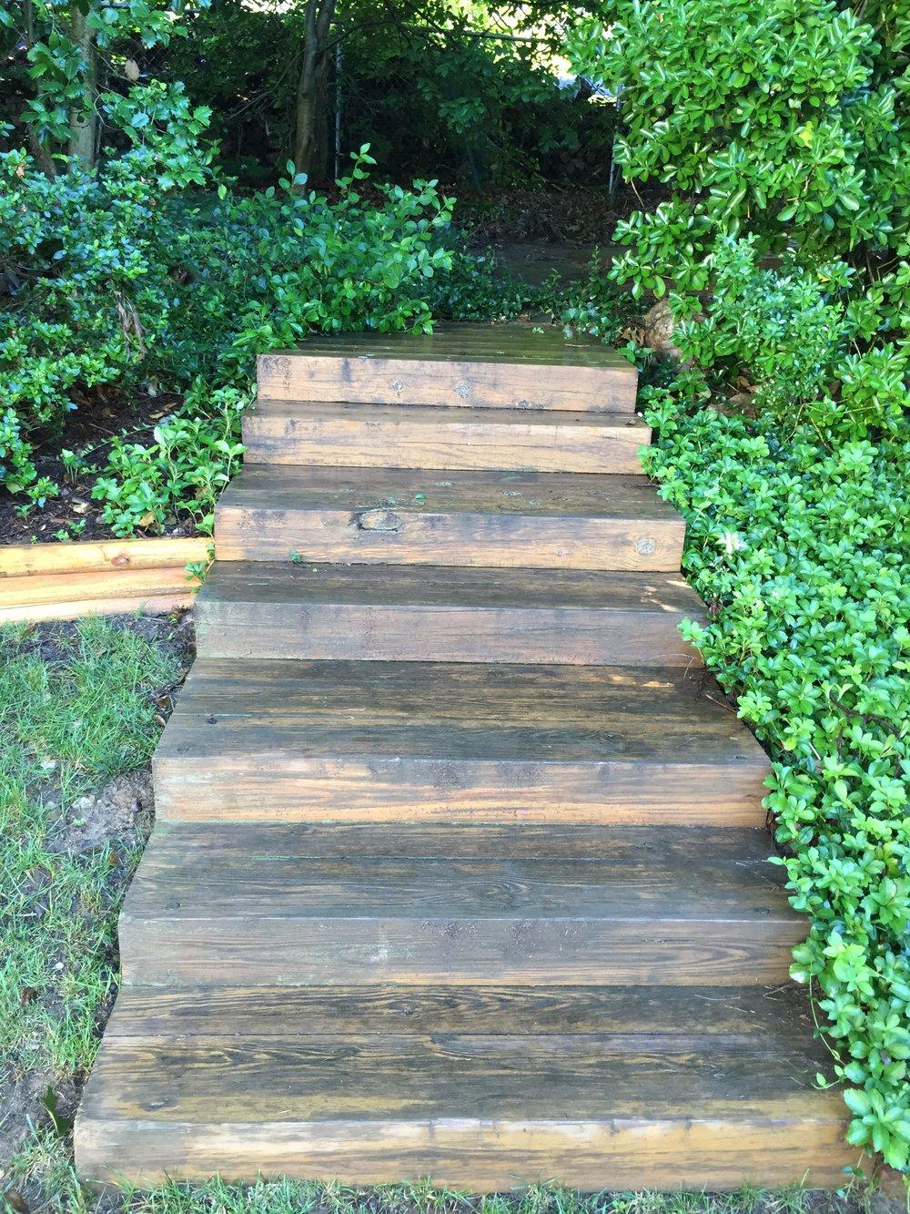 timber steps.JPG