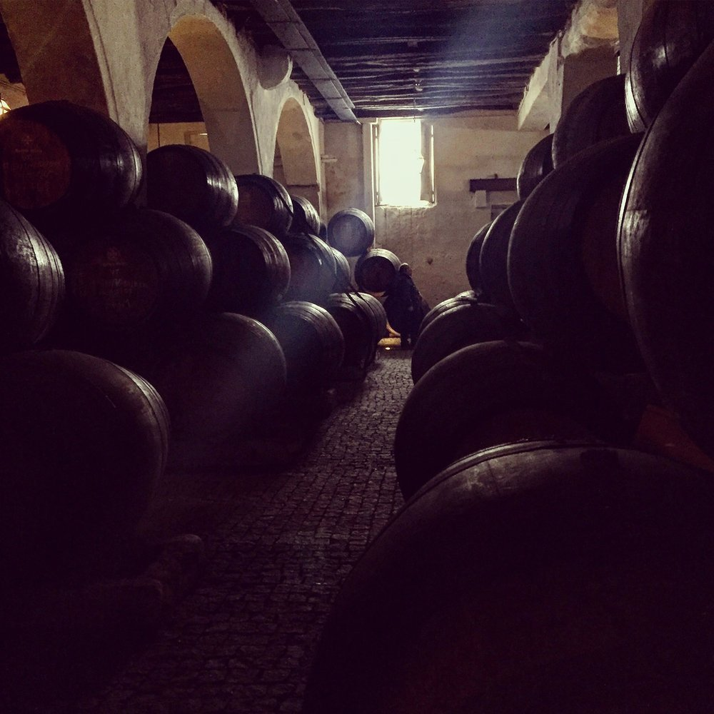 The Port Distillery Cellar of Ramos Pinto.
