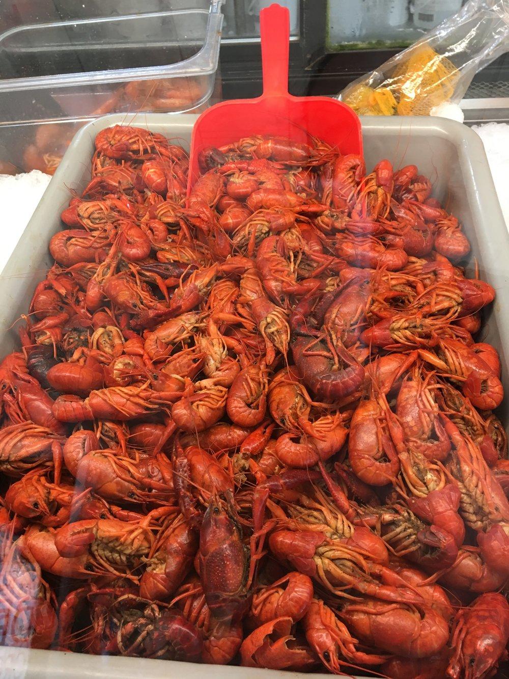 Crawfish in Louisiana.JPG