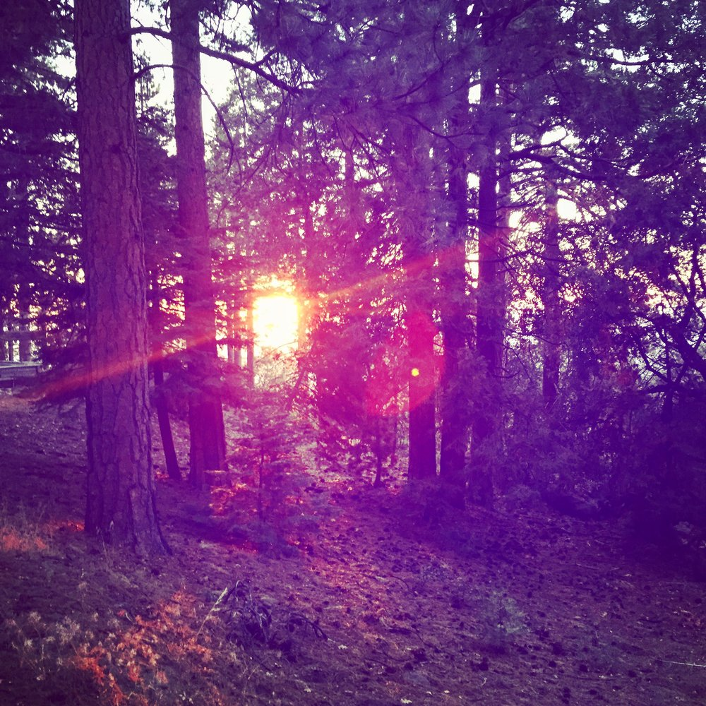 Idyllwild at sunset.JPG