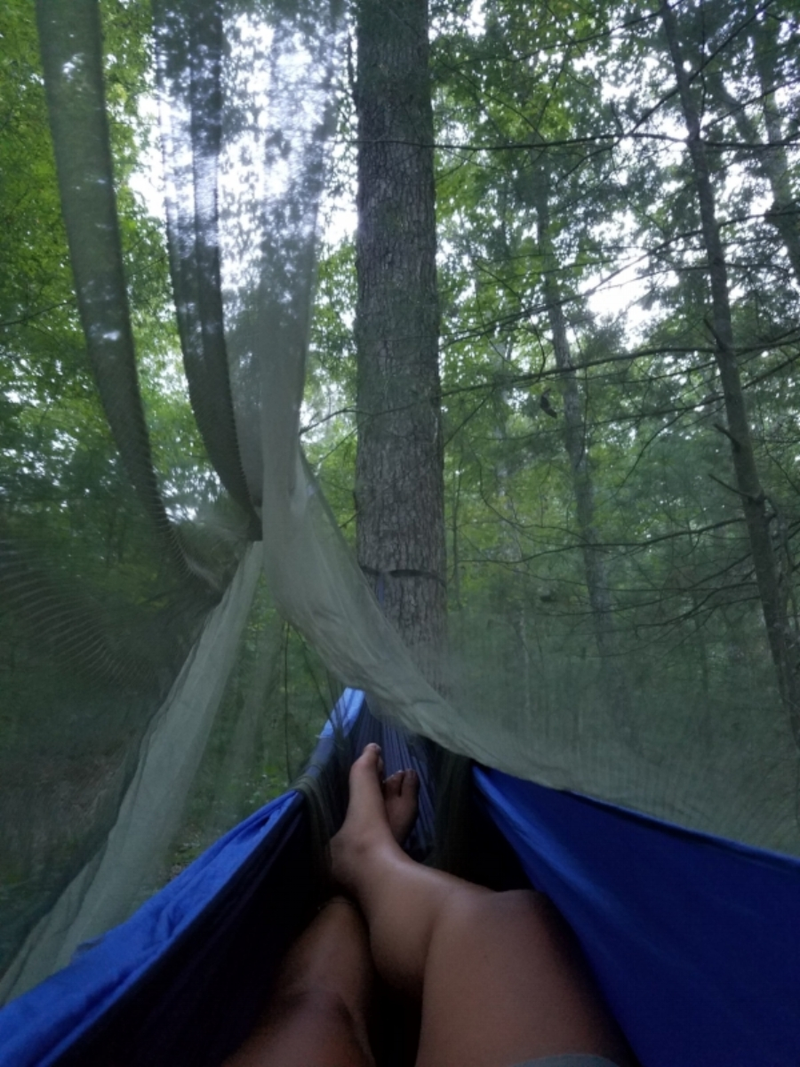 My bed for the night. Hammock's camping with an insect net.