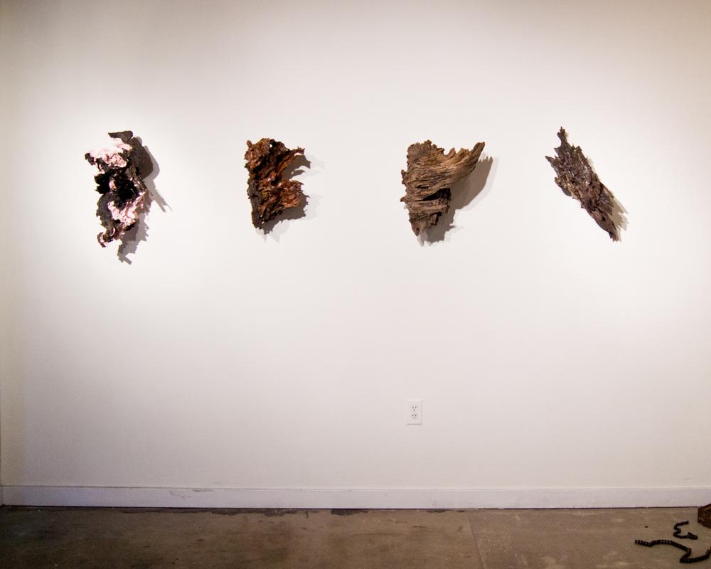 Tree Viscera Sculpture (install view)