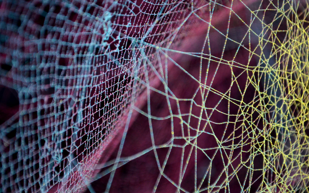 Color web prints 2.jpg