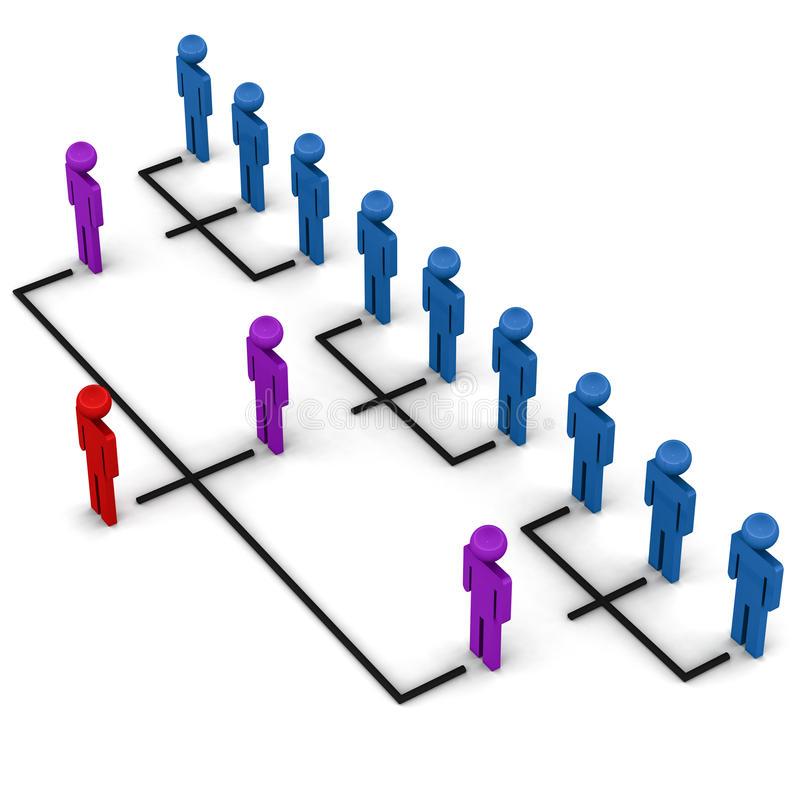 structure-d-organisation-26385670.jpg