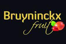 11 Logo Bruyninckx (scherm).jpg