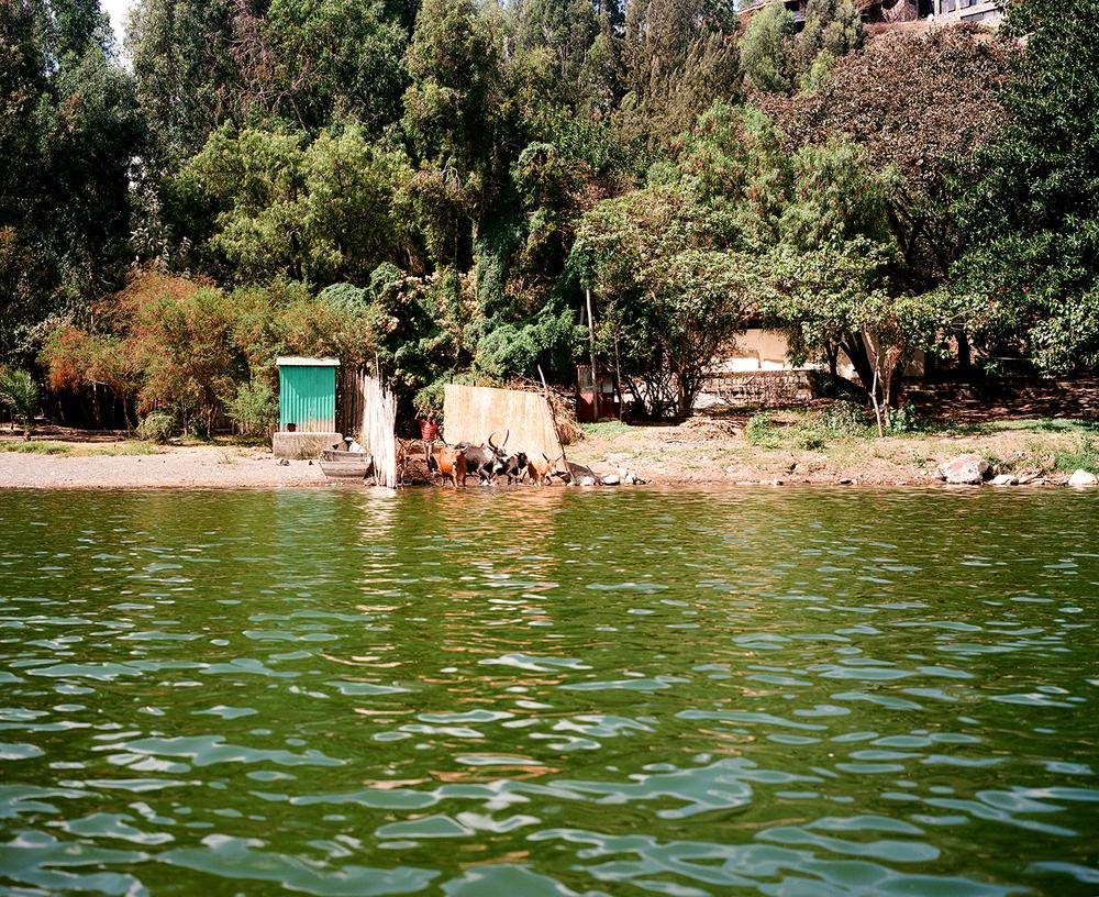 ethiopia_2016-33.jpg