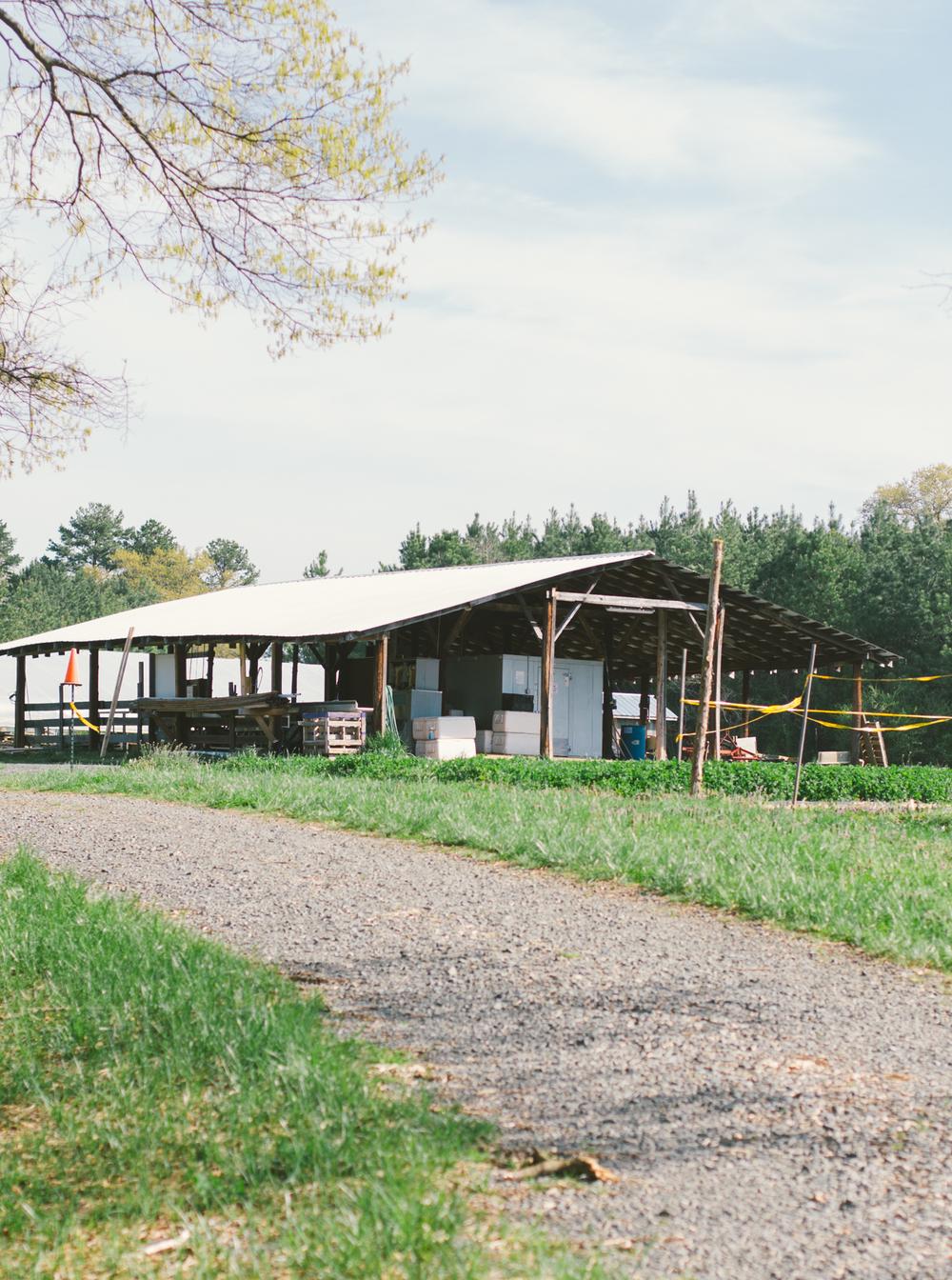 Lomax Incubator Farm-2.jpg