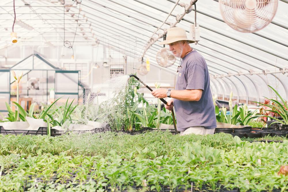 Lomax Incubator Farm-7.jpg