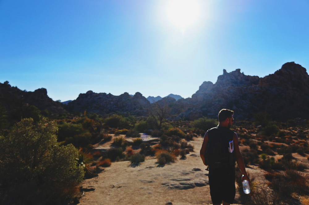 We took a hike at around noon   in Joshua Tree National Park and were OK with lots of water.  Surprisingly, it wasn't as hot in the Mojave Desert.  In Death Valley however, we felt we couldn't breathe when standing still.