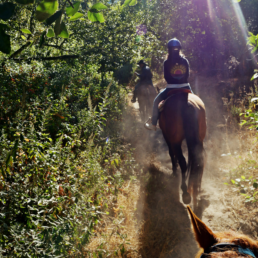 Big Sur is known for its horseback riding.