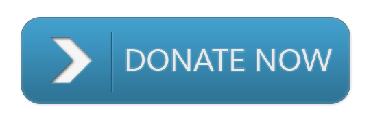 Image result for dONATE BUTTON GRAPHIC