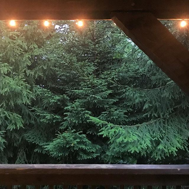 Glow on ✨ . . . #magicforest #deckglow #evergreen #inthepines #intothewoods #dinnerwithaview #mountainmagic #savageriverlodge