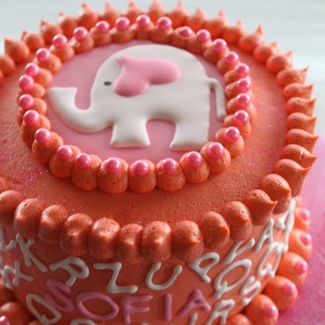 Elephants and Alphabets Cake.jpg
