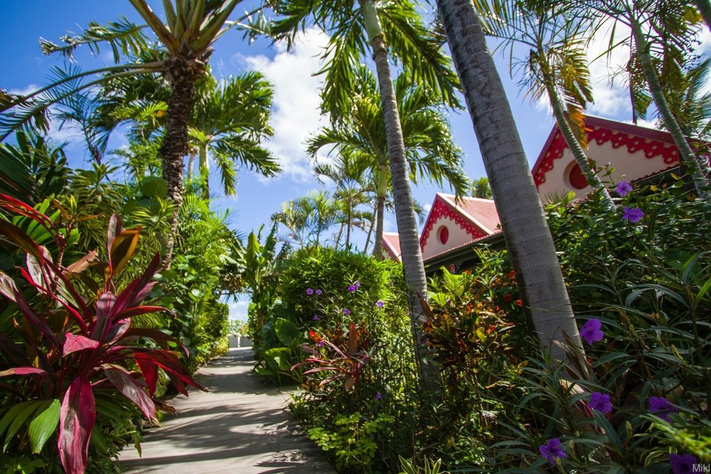 Hotel Tropical Garden 2.jpg
