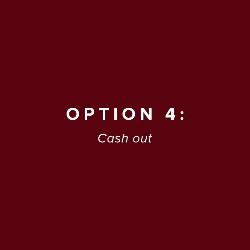 option-4.jpg