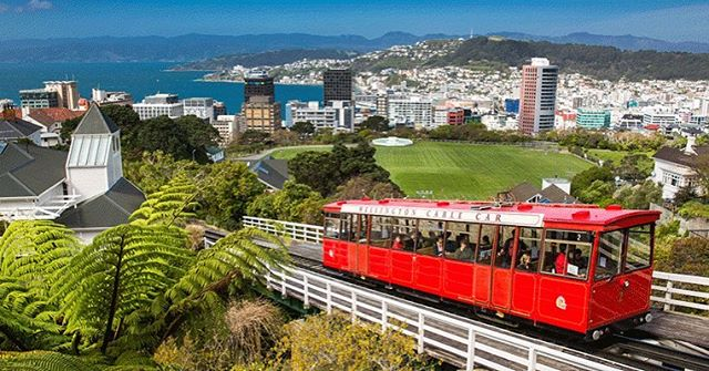 Tomorrow we are flying into one of our favourite parts of the world. Wellington, we are coming for you!  #construction #contractor #engineer #engineering #wellington #concrete #civilengineer #structures #building #heavymachinery #crane #constructionlife #constructionsite #build #lookingupatcranes #architecture #cablecar #verticallychallenged #craneporn #cranespotting #craneaddicted #cranelove #internationalconstruction #theultimatemachine  #cranelife #infrastructure #newzealand  #cranesinthesky #businesstime #businesssocks