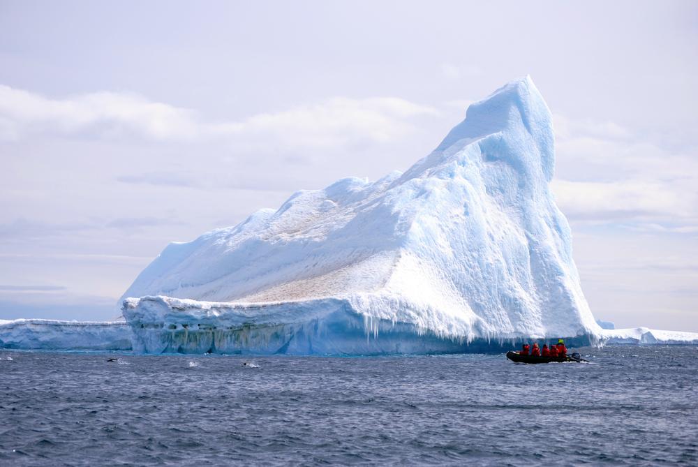 Akademik Ioffe, Zodiac, One Ocean, Antarctica, Penguins - Maggie a la Mode
