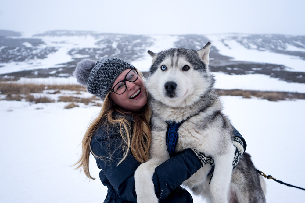 Maggie a la Mode - Why You Need to Visit Iceland in Winter Dog Sledding-1.jpg