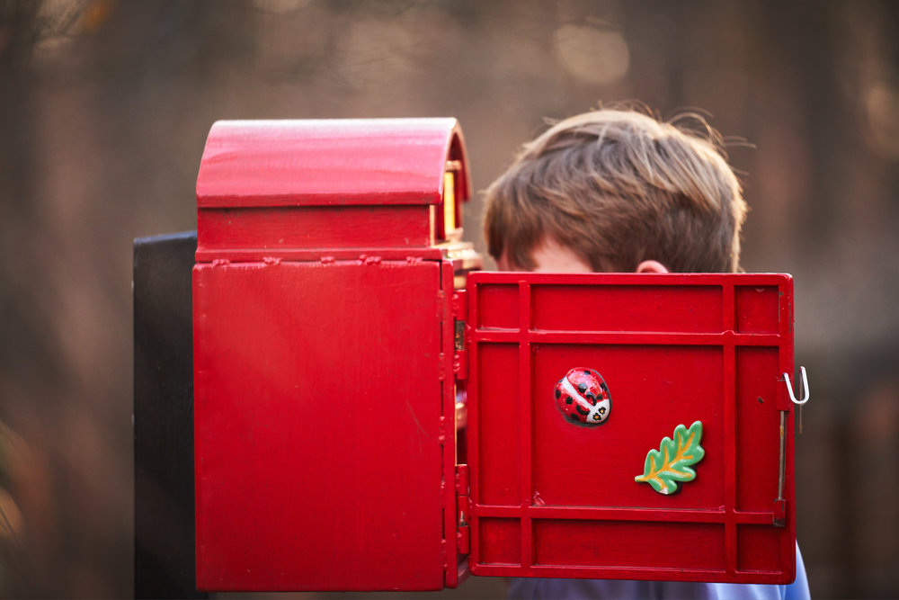 Boy looking in box | Family Photo Session at the Clemson Botanical Gardens