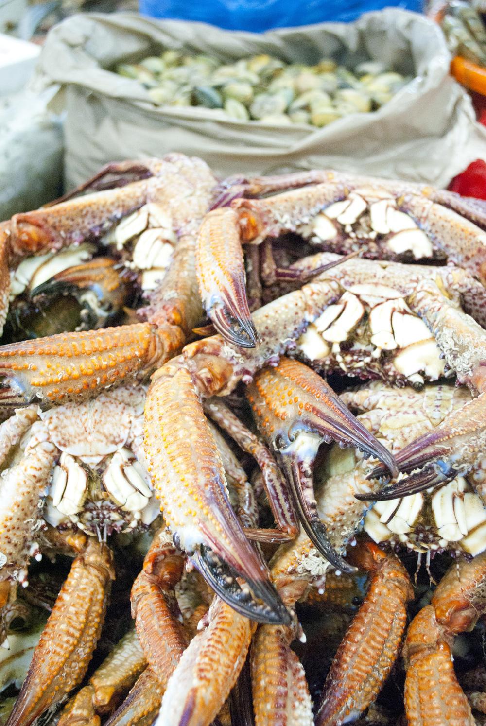 041411Dubai Crabs 1