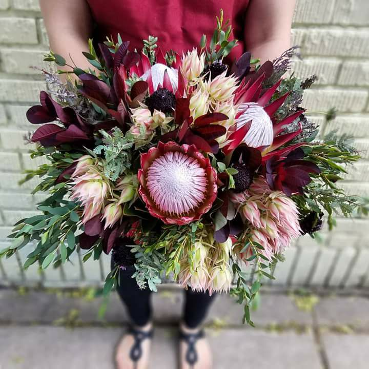 Red protea, dark and light bridal bouquet  Jessica Wonders Events, Minneapolis, MN