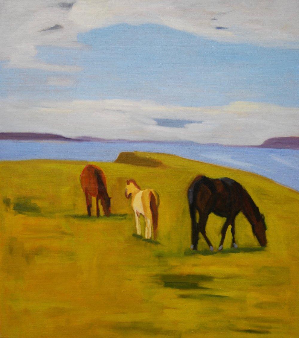 Mares & Foal